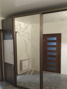 Шкаф купе в коридор3